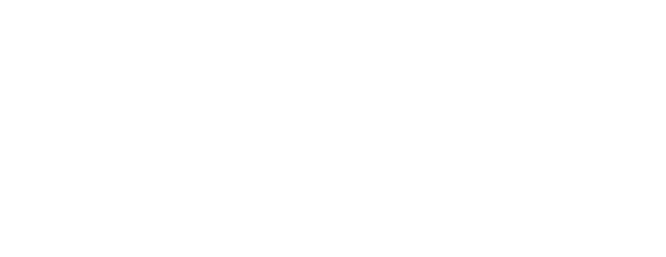 The Travelwrap Company Website Logo